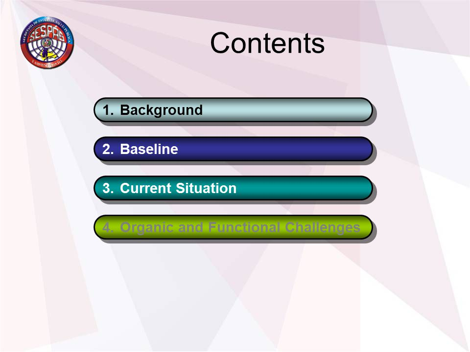Contents 1.Background 2.Baseline 3.Current Situation 4.Organic and Functional Challenges