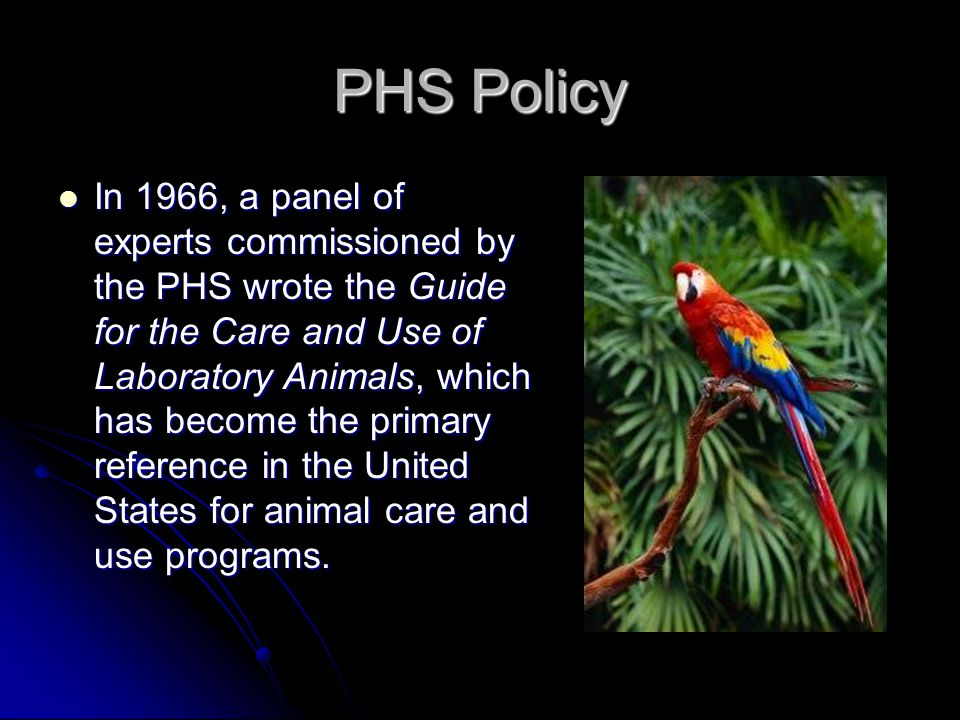 PHS Policy In 1966, a panel of experts commissioned by the PHS wrote the Guide for the Care and Use of Laboratory Animals, which has become the primary reference in the United States for animal care and use programs.
