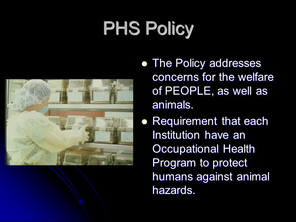 PHS Policy The Policy addresses concerns for the welfare of PEOPLE, as well as animals.