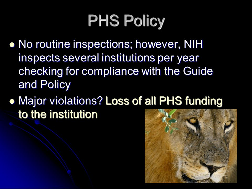 PHS Policy No routine inspections; however, NIH inspects several institutions per year checking for compliance with the Guide and Policy No routine inspections; however, NIH inspects several institutions per year checking for compliance with the Guide and Policy Major violations.