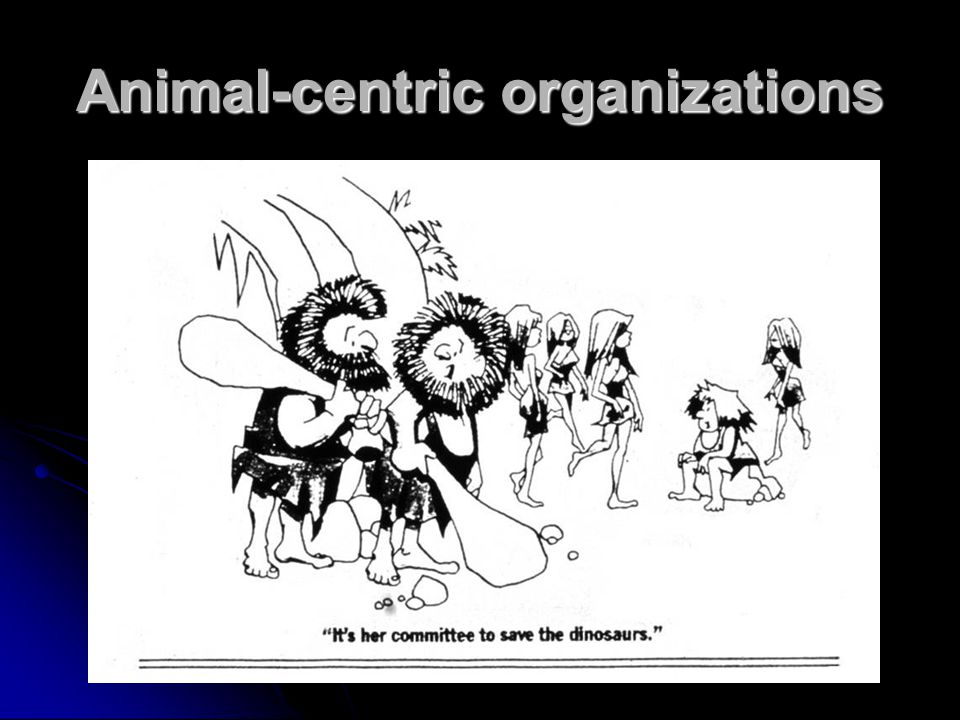 Animal-centric organizations