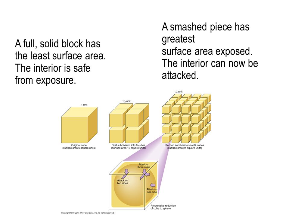 A full, solid block has the least surface area. The interior is safe from exposure.