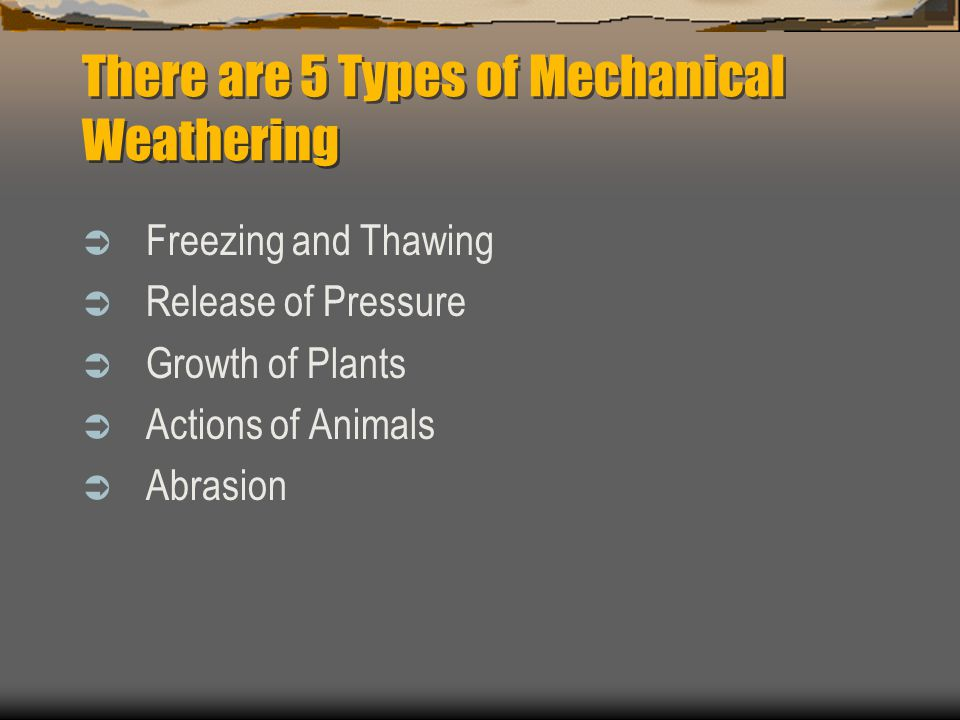 There are 5 Types of Mechanical Weathering  Freezing and Thawing  Release of Pressure  Growth of Plants  Actions of Animals  Abrasion