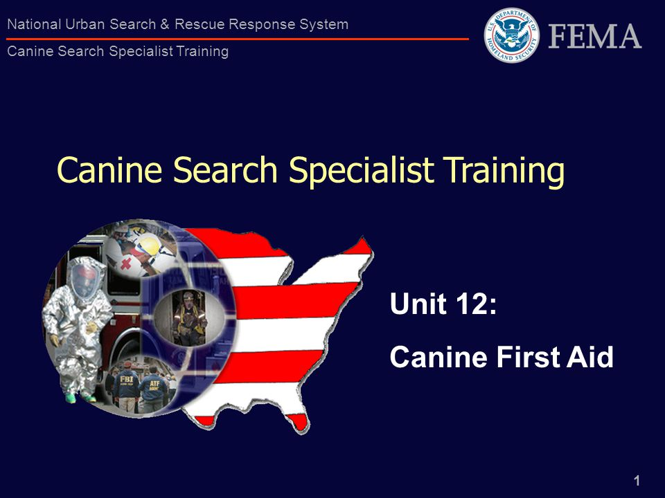 1 National Urban Search & Rescue Response System Canine Search Specialist Training Canine Search Specialist Training Unit 12: Canine First Aid