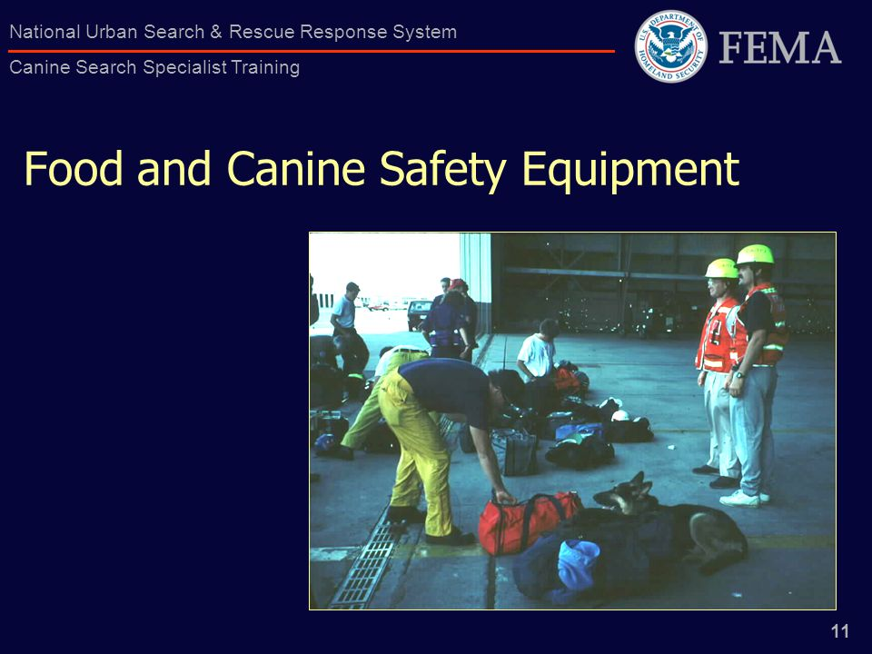 11 National Urban Search & Rescue Response System Canine Search Specialist Training Food and Canine Safety Equipment