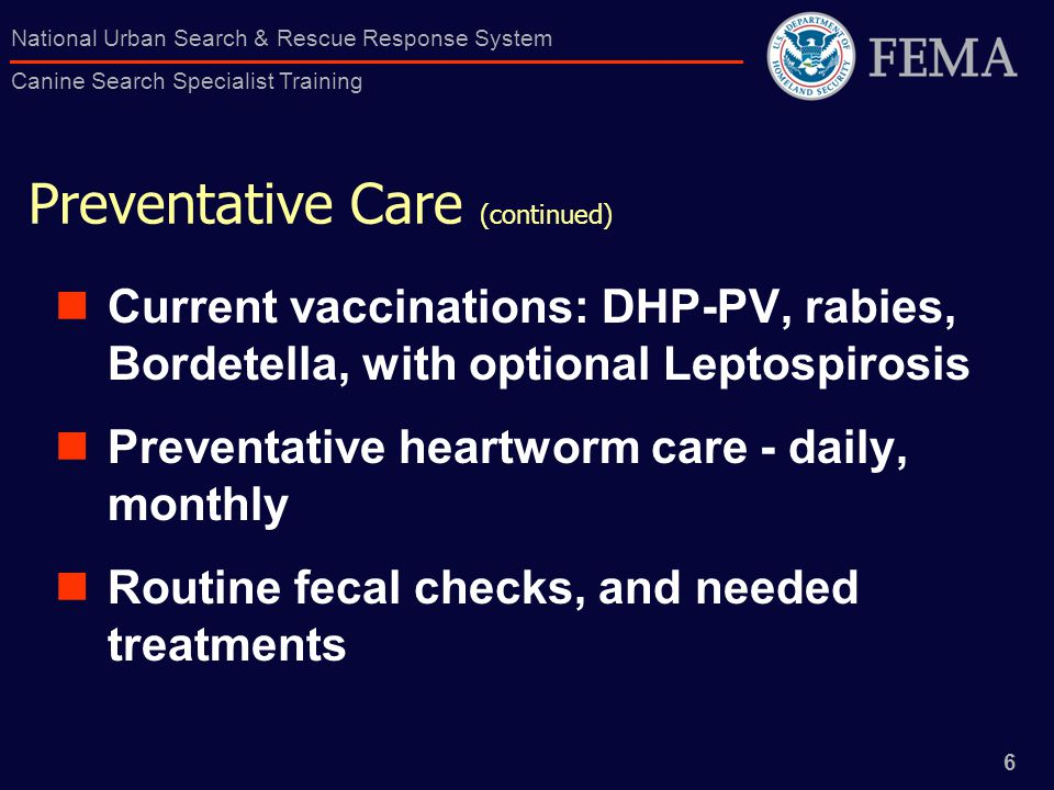 6 National Urban Search & Rescue Response System Canine Search Specialist Training Preventative Care (continued) Current vaccinations: DHP-PV, rabies, Bordetella, with optional Leptospirosis Preventative heartworm care - daily, monthly Routine fecal checks, and needed treatments