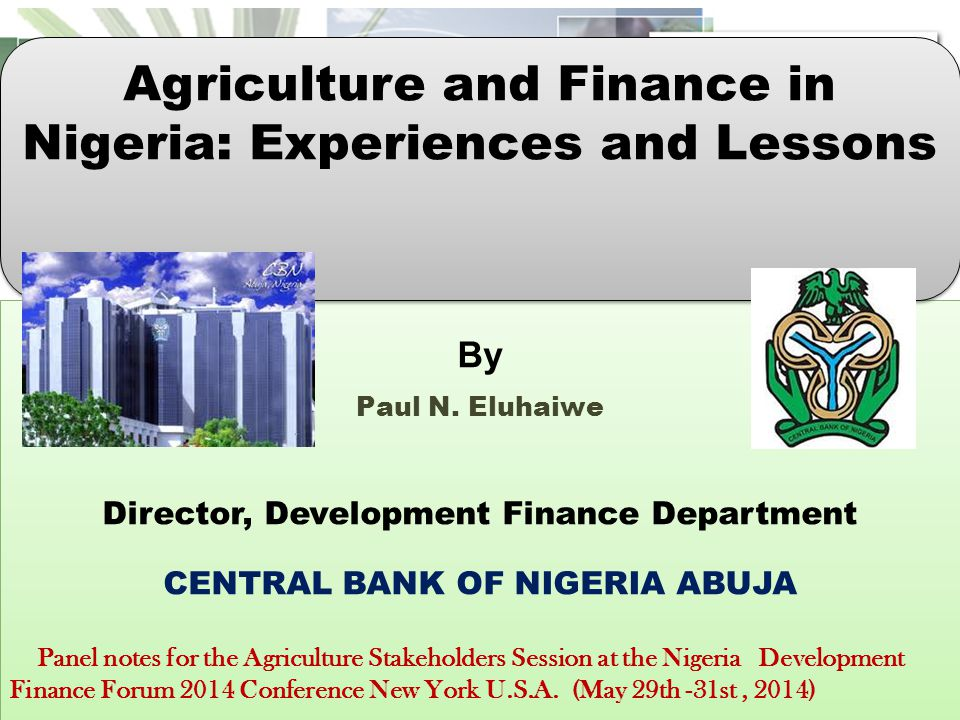 "Presentation ""By Paul N. Eluhaiwe Director, Development Finance ..."
