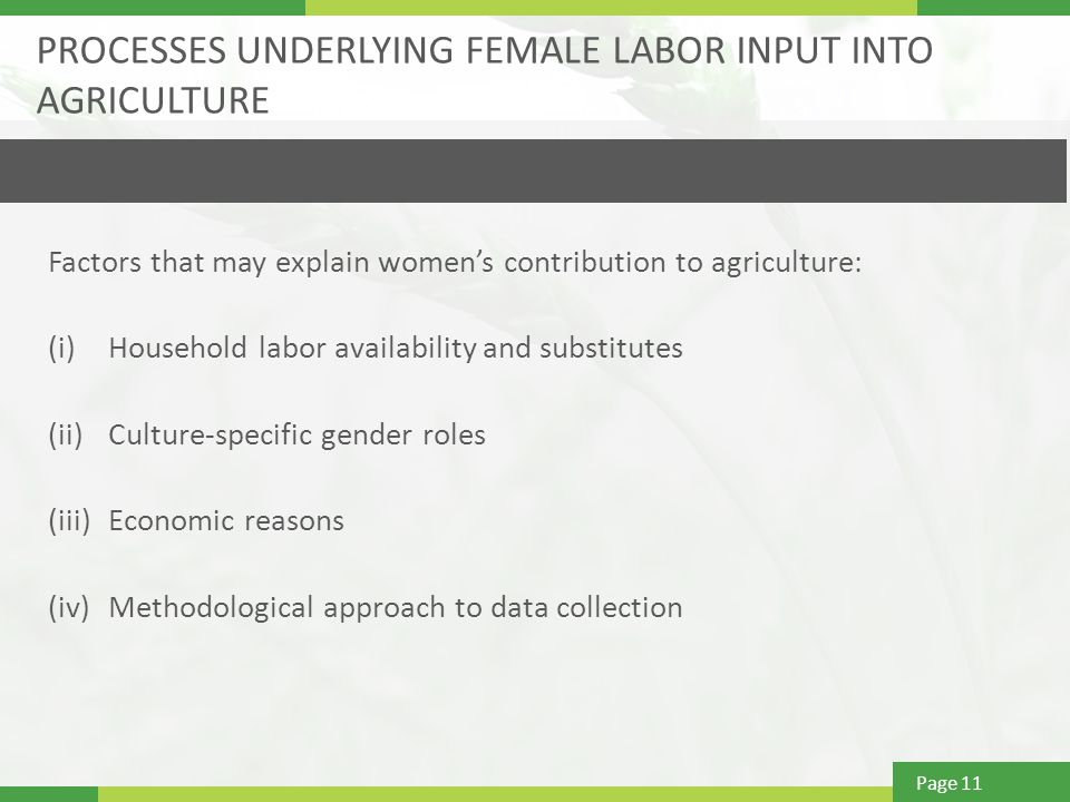 Page 11 PROCESSES UNDERLYING FEMALE LABOR INPUT INTO AGRICULTURE Factors that may explain women's contribution to agriculture: (i)Household labor availability and substitutes (ii)Culture-specific gender roles (iii)Economic reasons (iv)Methodological approach to data collection