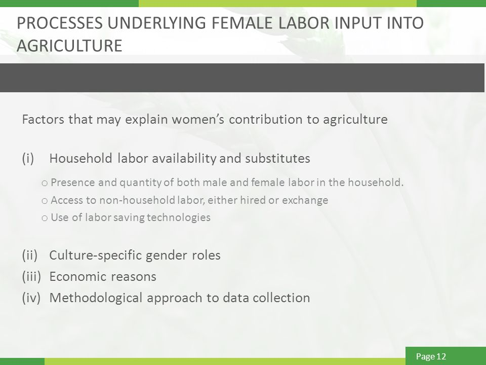 Page 12 PROCESSES UNDERLYING FEMALE LABOR INPUT INTO AGRICULTURE Factors that may explain women's contribution to agriculture (i)Household labor availability and substitutes o Presence and quantity of both male and female labor in the household.