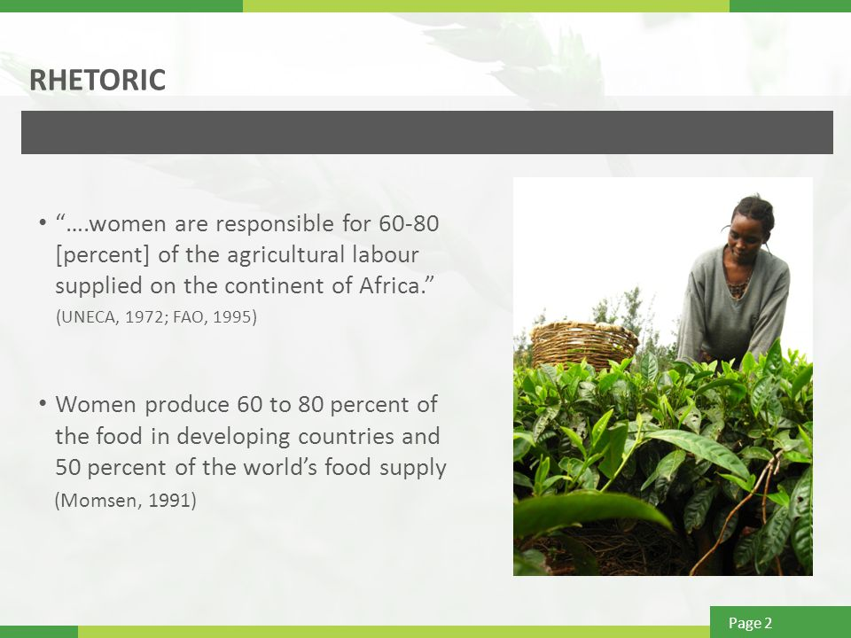 Page 2 RHETORIC ….women are responsible for [percent] of the agricultural labour supplied on the continent of Africa. (UNECA, 1972; FAO, 1995) Women produce 60 to 80 percent of the food in developing countries and 50 percent of the world's food supply (Momsen, 1991)