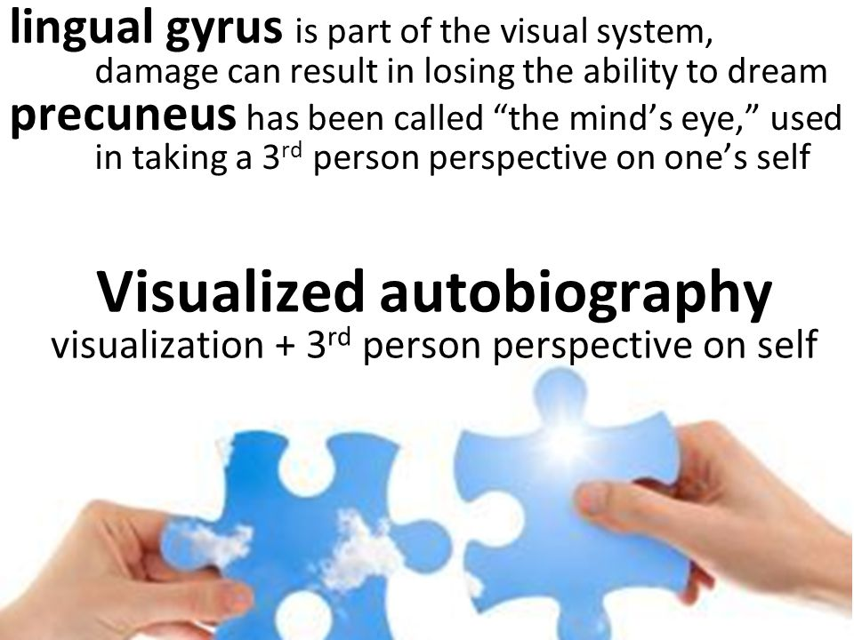 Visualized autobiography visualization + 3 rd person perspective on self lingual gyrus is part of the visual system, damage can result in losing the ability to dream precuneus has been called the mind's eye, used in taking a 3 rd person perspective on one's self