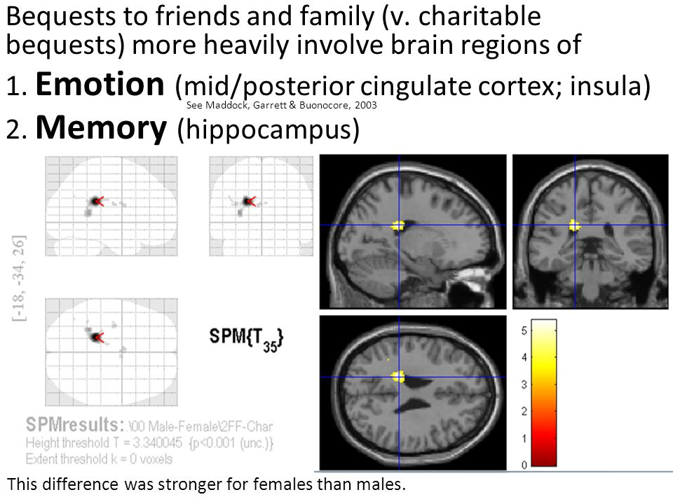 Bequests to friends and family (v. charitable bequests) more heavily involve brain regions of 1.