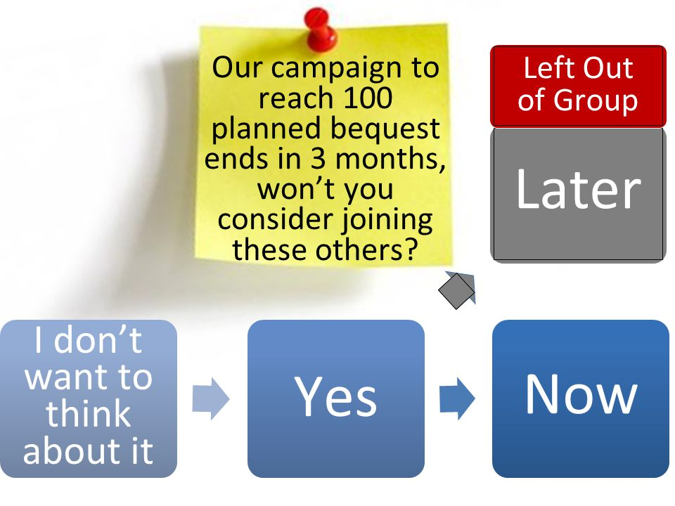 Now Yes I don't want to think about it Later Our campaign to reach 100 planned bequest ends in 3 months, won't you consider joining these others.
