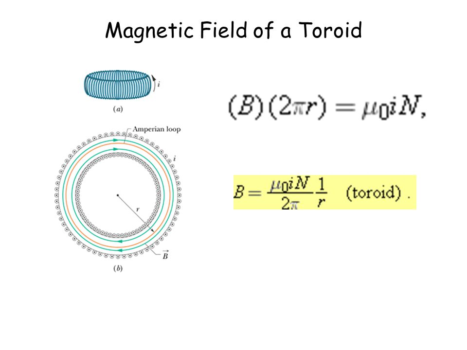 Magnetic Field of a Toroid