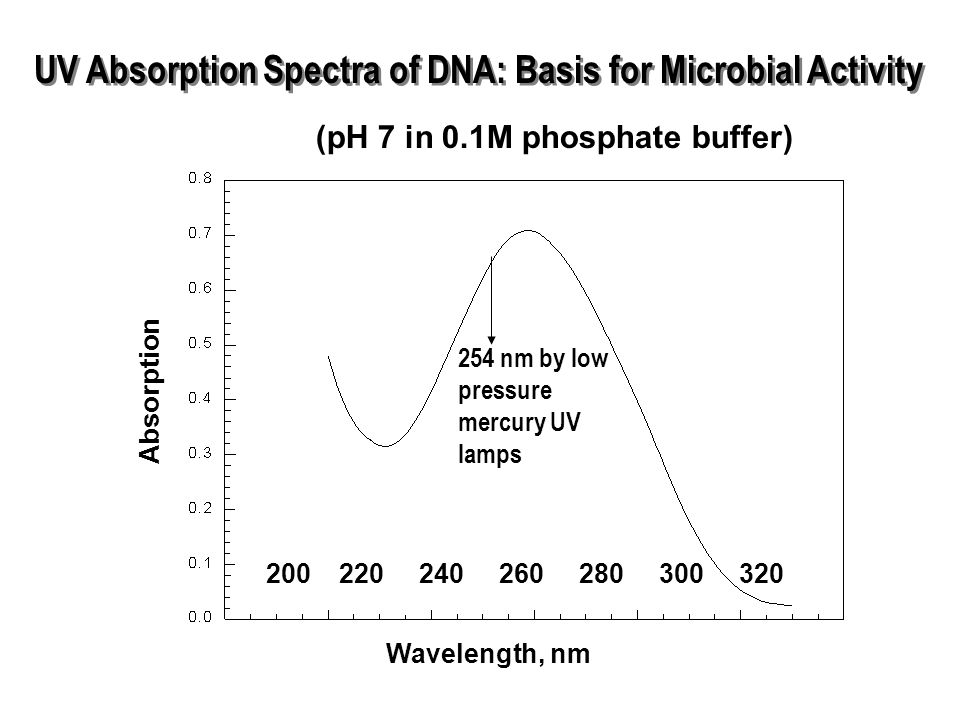 UV Absorption Spectra of DNA: Basis for Microbial Activity Wavelength, nm Absorption (pH 7 in 0.1M phosphate buffer) 200220240260280300320 254 nm by low pressure mercury UV lamps