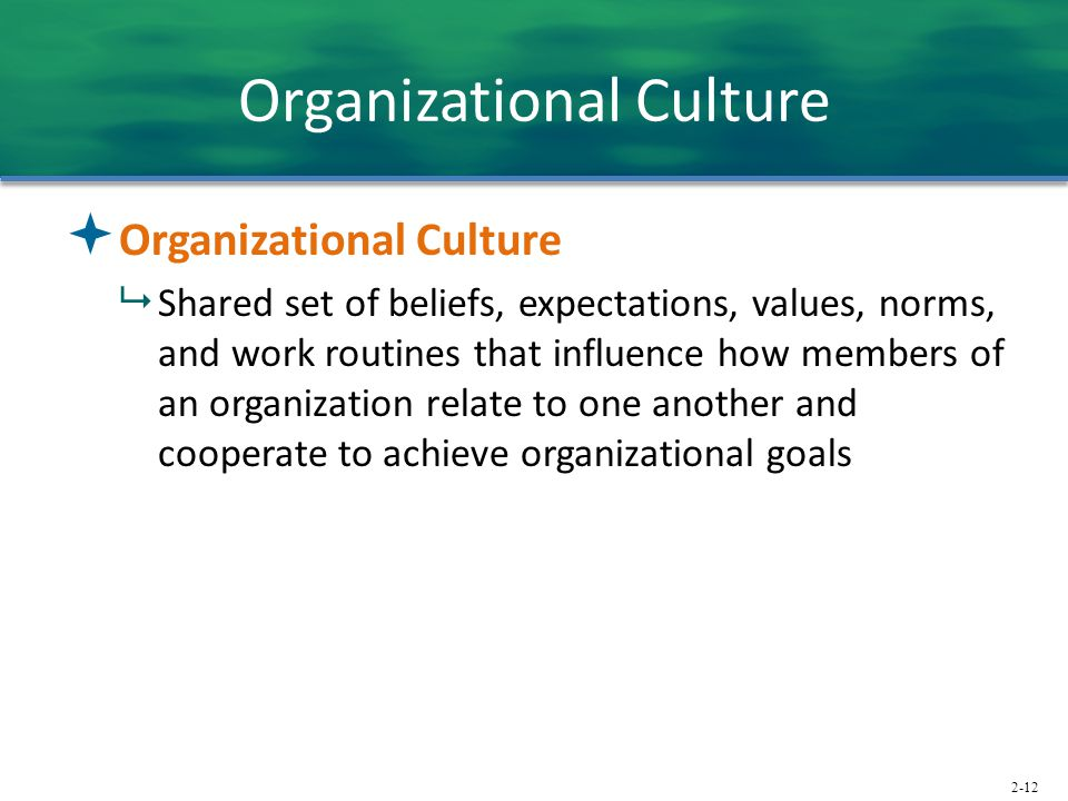 2-12 Organizational Culture  Organizational Culture  Shared set of beliefs, expectations, values, norms, and work routines that influence how members of an organization relate to one another and cooperate to achieve organizational goals