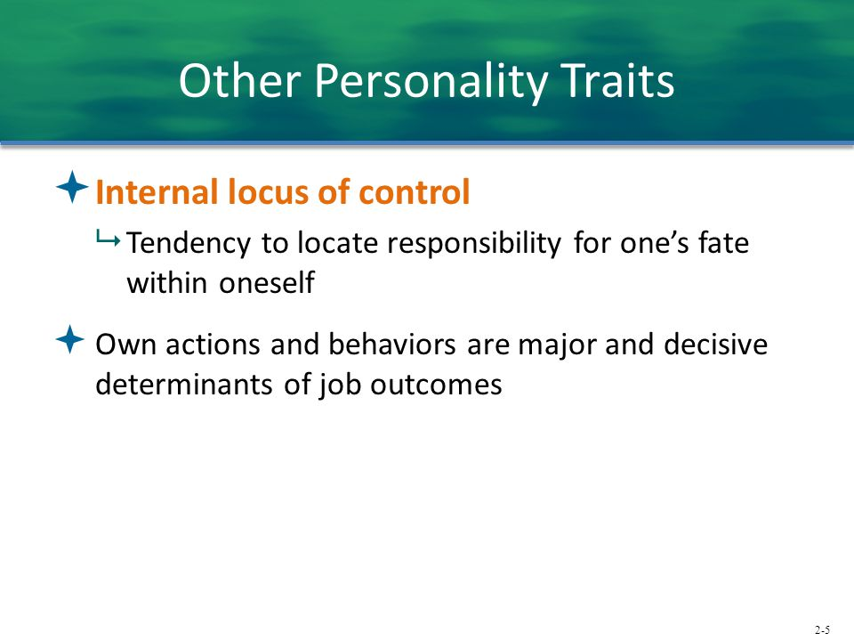 2-5 Other Personality Traits  Internal locus of control  Tendency to locate responsibility for one's fate within oneself  Own actions and behaviors are major and decisive determinants of job outcomes
