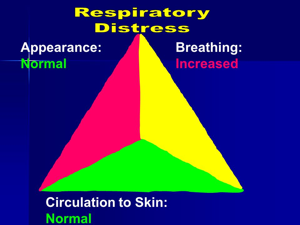 Appearance: Normal Breathing: Increased Circulation to Skin: Normal