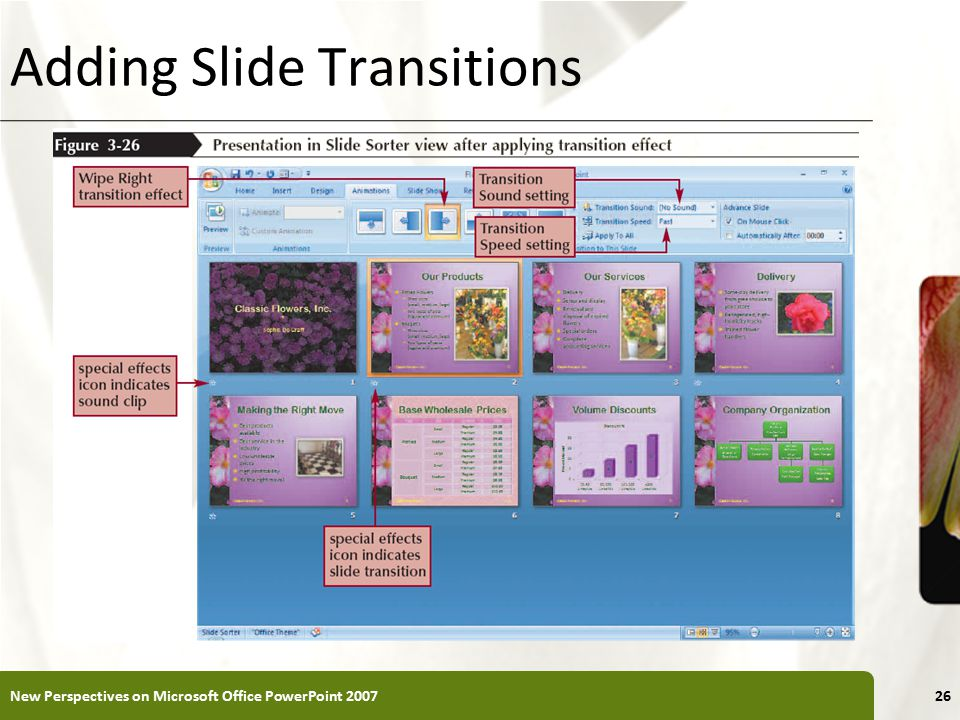 XP Adding Slide Transitions New Perspectives on Microsoft Office PowerPoint