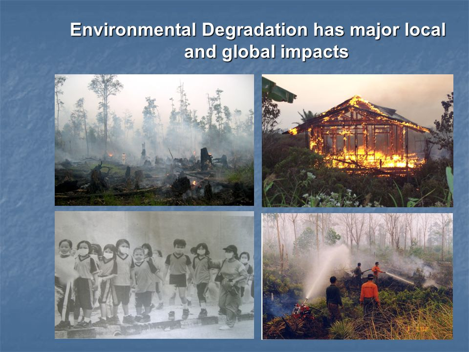 Environmental Degradation has major local and global impacts