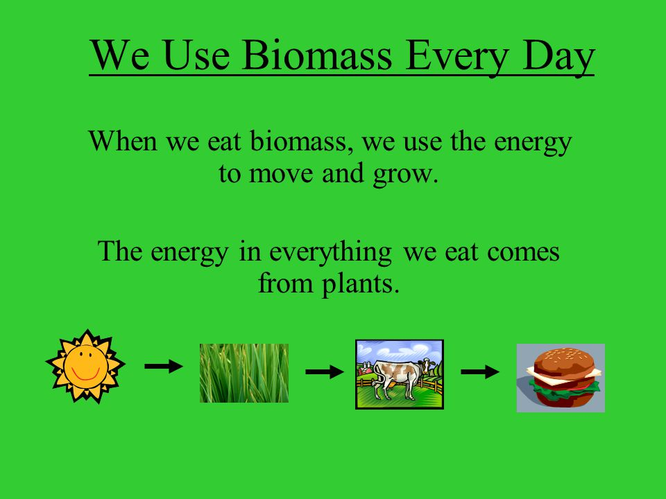 We Use Biomass Every Day When we eat biomass, we use the energy to move and grow.