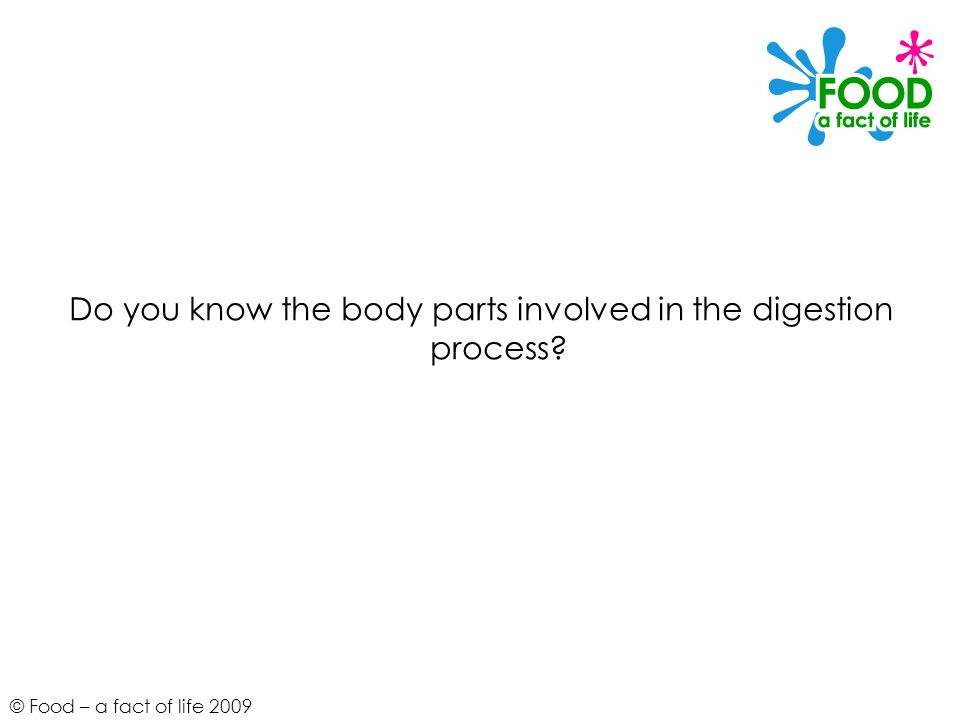 © Food – a fact of life 2009 Do you know the body parts involved in the digestion process