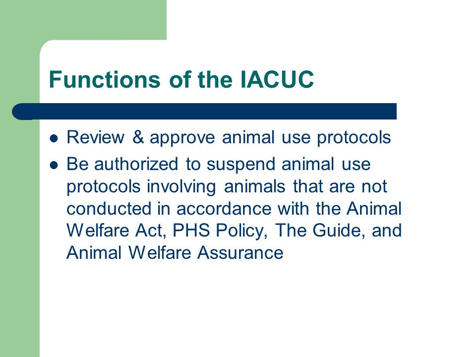 Functions of the IACUC Review & approve animal use protocols Be authorized to suspend animal use protocols involving animals that are not conducted in accordance with the Animal Welfare Act, PHS Policy, The Guide, and Animal Welfare Assurance