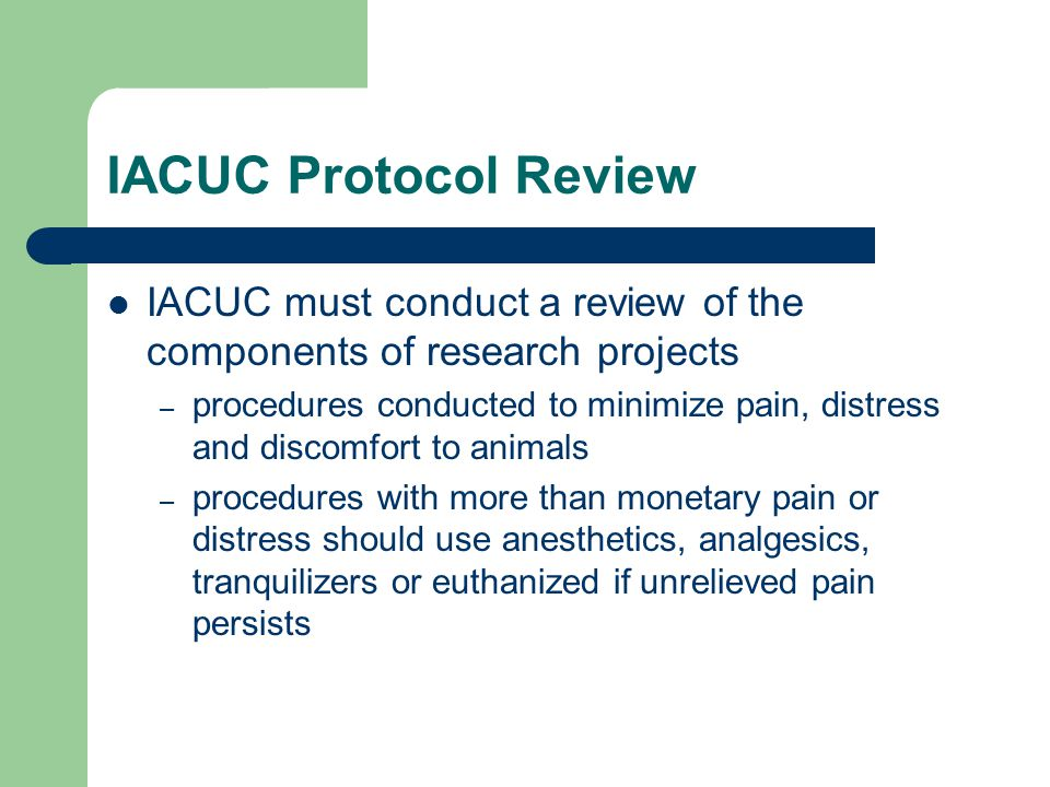 IACUC Protocol Review IACUC must conduct a review of the components of research projects – procedures conducted to minimize pain, distress and discomfort to animals – procedures with more than monetary pain or distress should use anesthetics, analgesics, tranquilizers or euthanized if unrelieved pain persists