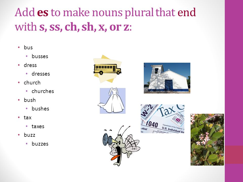 Are these nouns plural or singular 1.houses 2.baby 3.animals 4.tables 5.books 6.blueberries