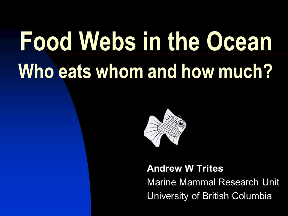 Food Webs in the Ocean Andrew W Trites Marine Mammal Research Unit University of British Columbia Who eats whom and how much