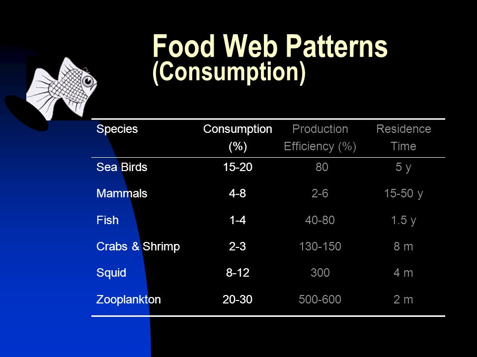 Food Web Patterns (Consumption) SpeciesConsumption (%) Production Efficiency (%) Residence Time Sea Birds y Mammals y Fish y Crabs & Shrimp m Squid m Zooplankton m