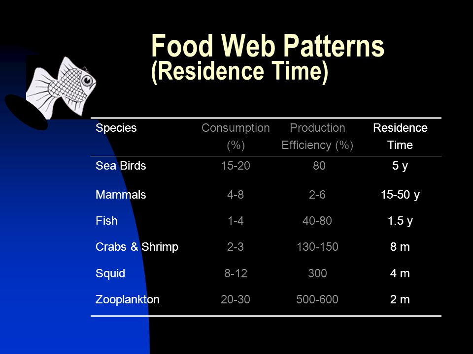 Food Web Patterns (Residence Time) SpeciesConsumption (%) Production Efficiency (%) Residence Time Sea Birds y Mammals y Fish y Crabs & Shrimp m Squid m Zooplankton m