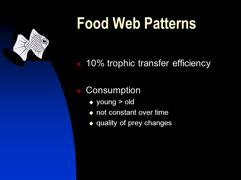 Food Web Patterns 10% trophic transfer efficiency Consumption  young > old  not constant over time  quality of prey changes