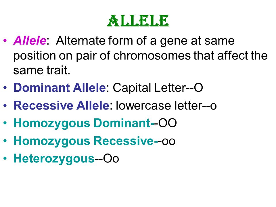 Genes, Chromosomes and DNA (Chapter 2). Composed of 4 nucleotide ...