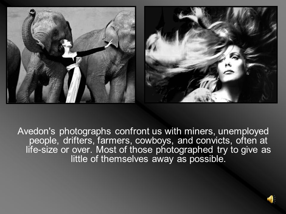 Avedon s photographs confront us with miners, unemployed people, drifters, farmers, cowboys, and convicts, often at life-size or over.