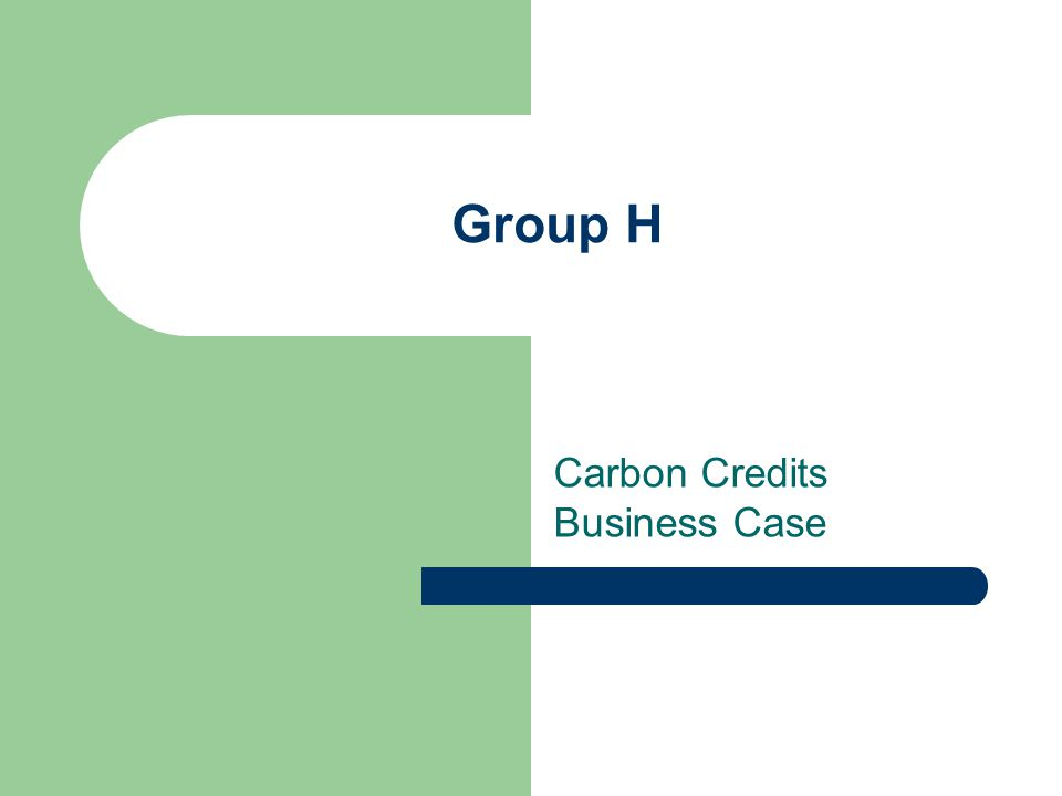 Group H Carbon Credits Business Case