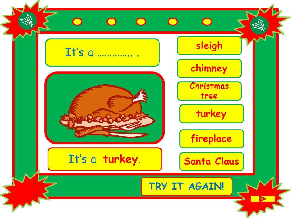 It's a …………... chimney It's a turkey. TRY IT AGAIN.