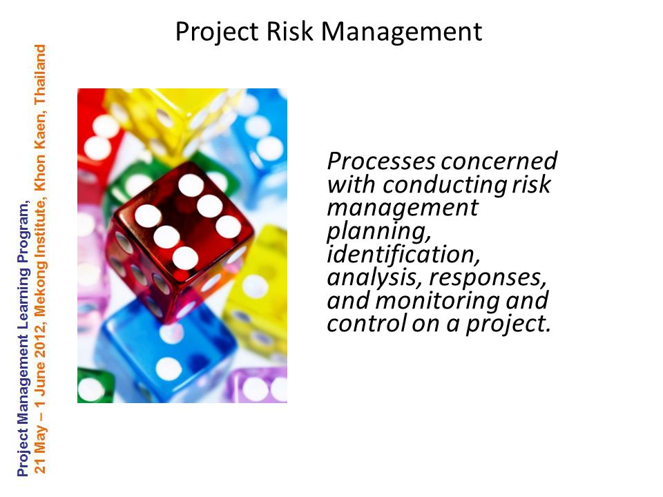 Processes concerned with conducting risk management planning, identification, analysis, responses, and monitoring and control on a project.