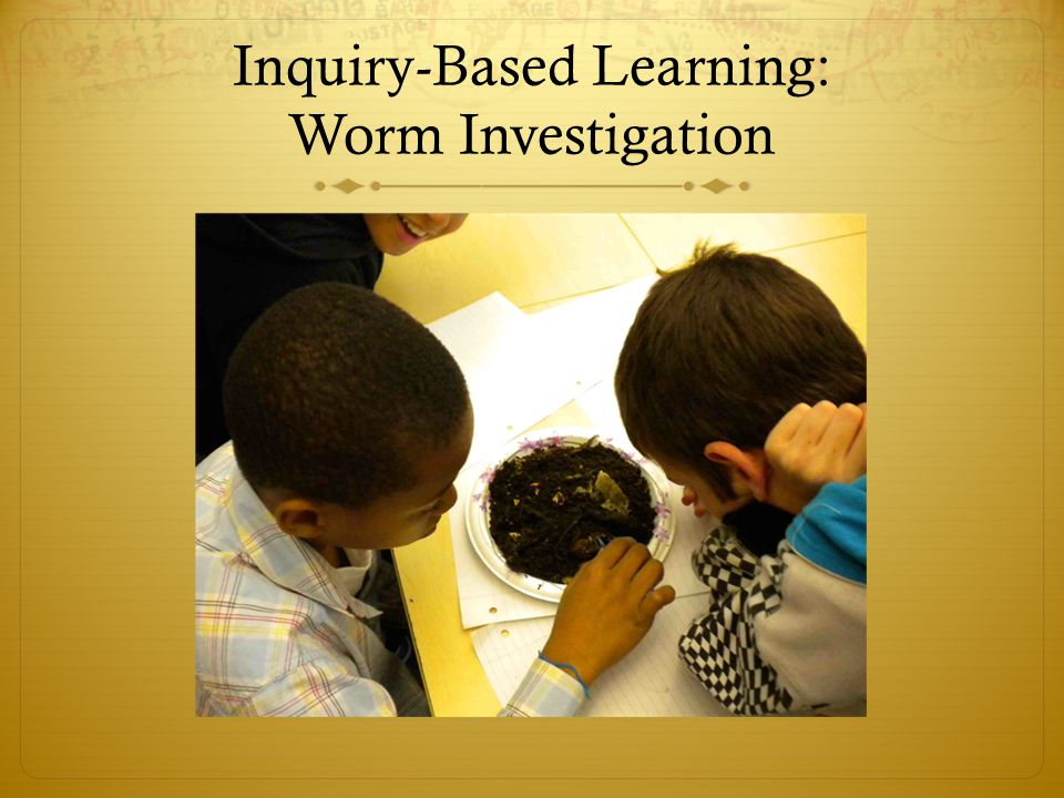 Inquiry-Based Learning: Worm Investigation