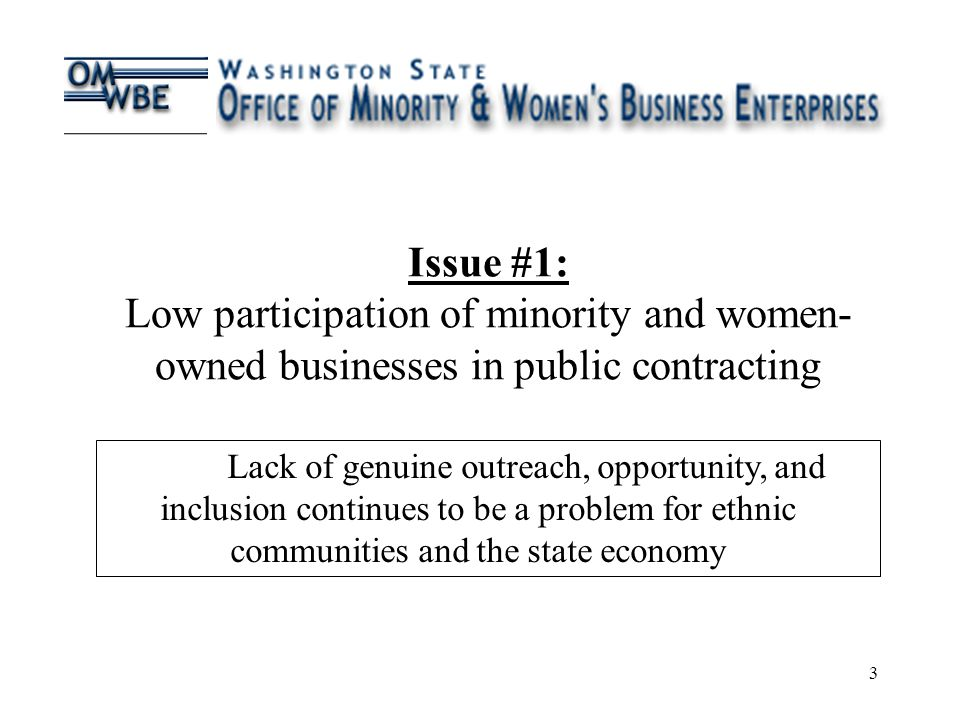 3 Issue #1: Low participation of minority and women- owned businesses in public contracting Lack of genuine outreach, opportunity, and inclusion continues to be a problem for ethnic communities and the state economy