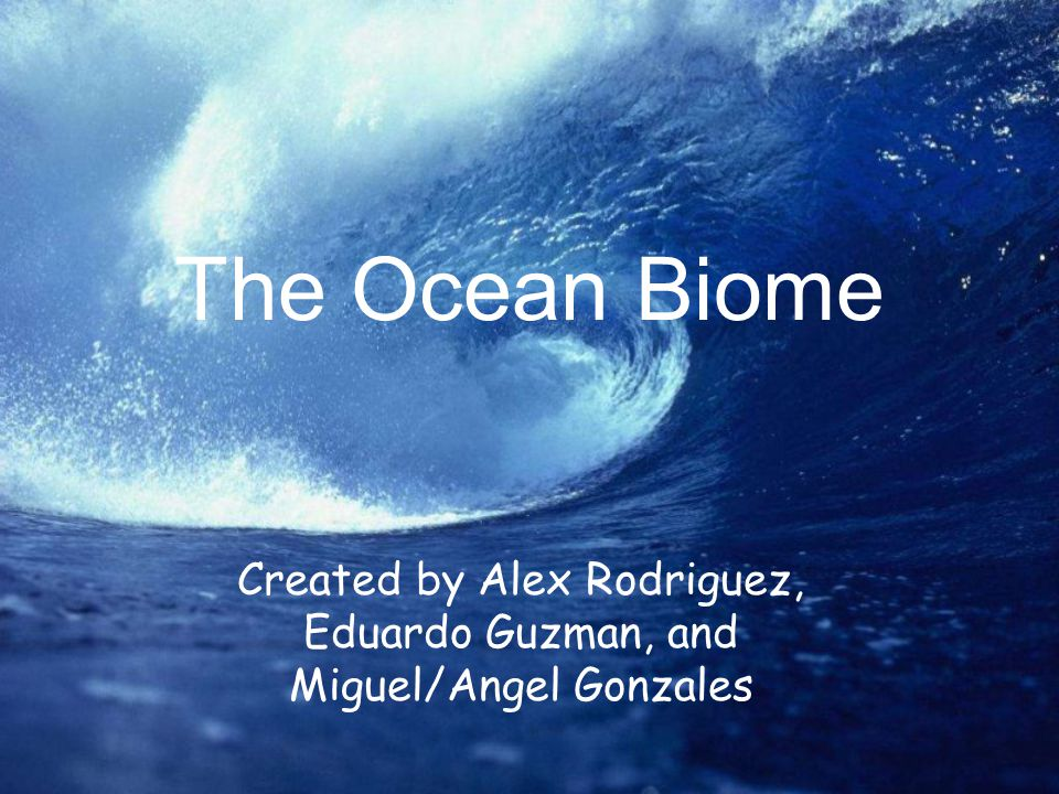 The Ocean Biome Created by Alex Rodriguez, Eduardo Guzman, and Miguel/Angel Gonzales
