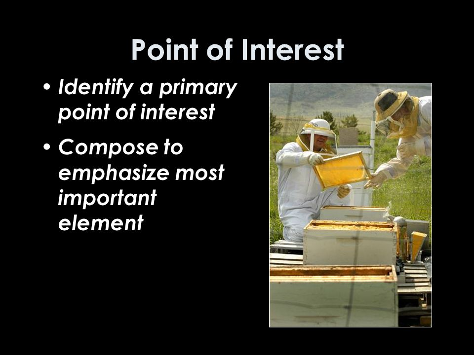 Point of Interest Identify a primary point of interest Compose to emphasize most important element