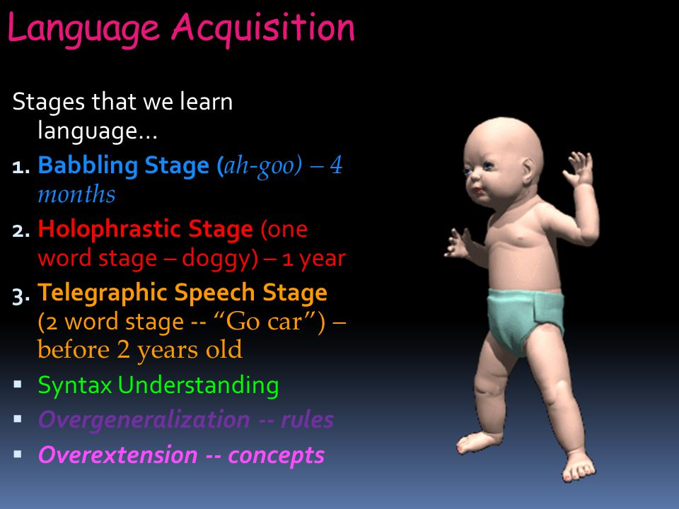Language Acquisition Stages that we learn language… 1.