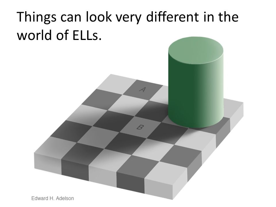 Things can look very different in the world of ELLs.