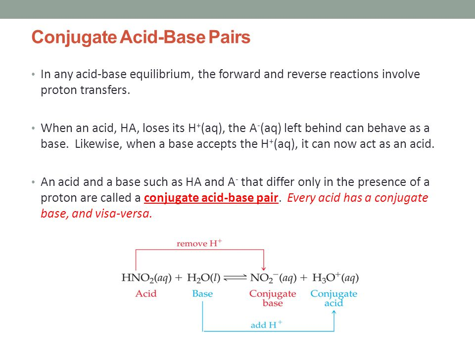 Conjugate Acid-Base Pairs In any acid-base equilibrium, the forward and reverse reactions involve proton transfers.