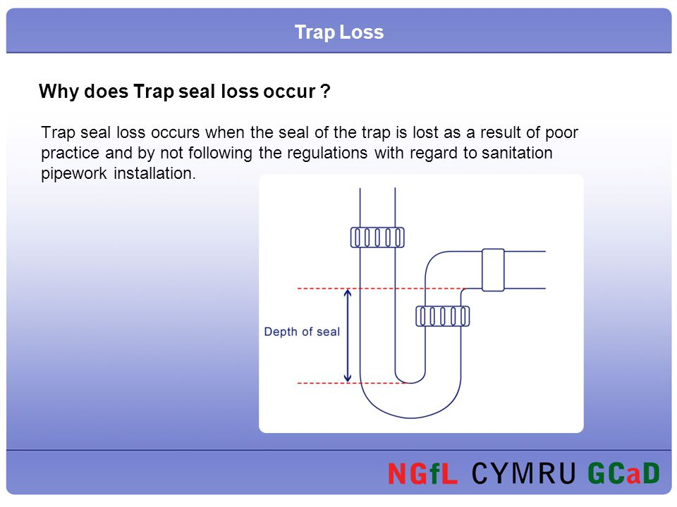 Why does Trap seal loss occur ? Trap seal loss occurs when the seal of the trap is lost as a result of poor practice and by not following the regulati