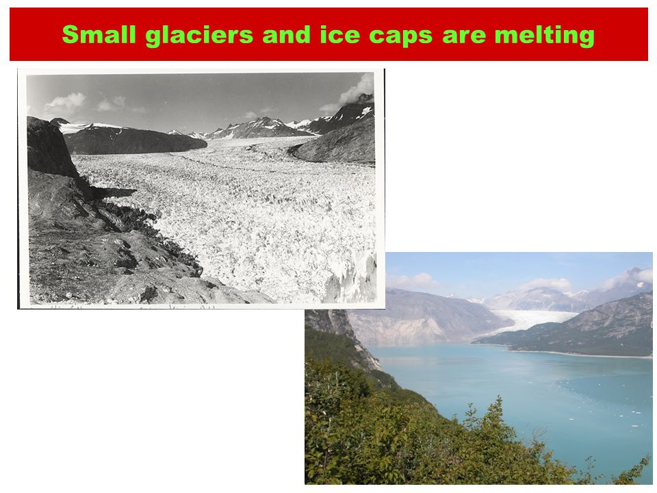 1941 Small glaciers and ice caps are melting 2004