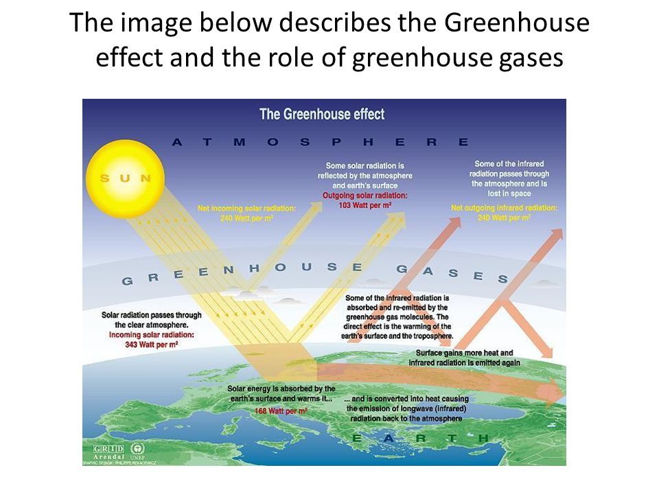 The image below describes the Greenhouse effect and the role of greenhouse gases