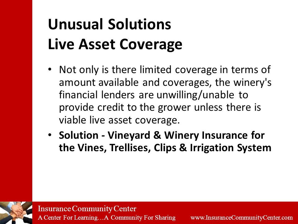 Insurance Community Center A Center For Learning…A Community For Sharing www.InsuranceCommunityCenter.com Unusual Solutions Live Asset Coverage Not only is there limited coverage in terms of amount available and coverages, the winery s financial lenders are unwilling/unable to provide credit to the grower unless there is viable live asset coverage.