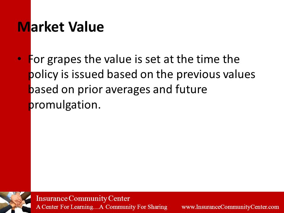 Insurance Community Center A Center For Learning…A Community For Sharing www.InsuranceCommunityCenter.com Market Value For grapes the value is set at the time the policy is issued based on the previous values based on prior averages and future promulgation.